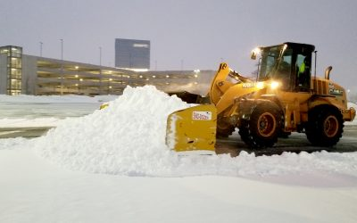 Some fun snow facts you may not know